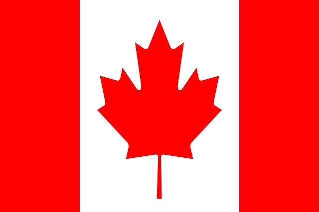 カナダの遠隔治療